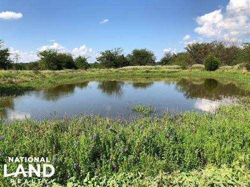 11.75 Acres Pond, Large Trees, Grea : Mabank : Kaufman County : Texas