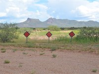 Nice Mobile Home Lot, Only $75/Mo : Douglas : Cochise County : Arizona