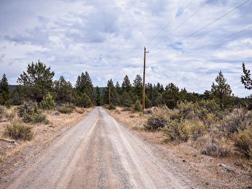 Want To Fall In Love With Oregon : Bonanza : Klamath County : Oregon