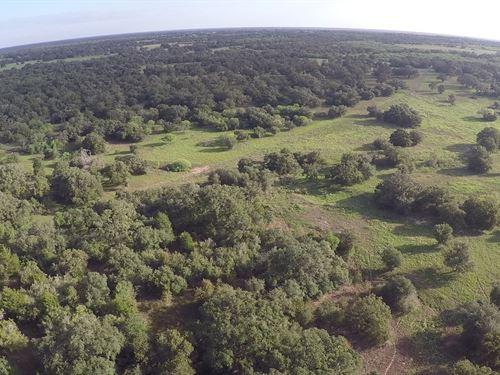 Sapp Road Tract B, 19.6 Acres : Cuero : Dewitt County : Texas