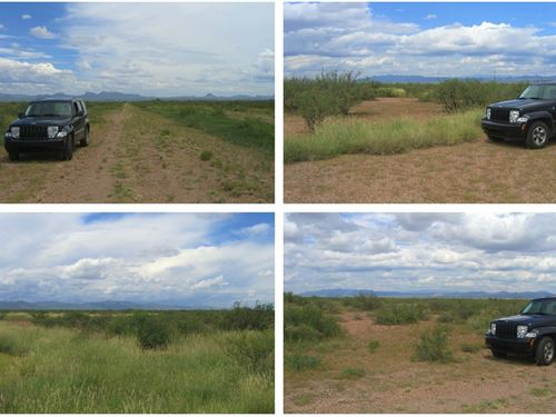 3 Nice Adjoining Buildable Lots : Douglas : Cochise County : Arizona