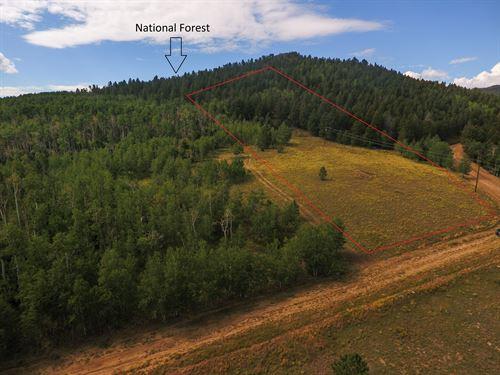 4359833, Gorgeous 3.5 Acre Parcel : Hartsel : Park County : Colorado