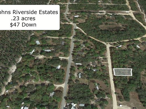 Premium .23 Acre Lot : Satsuma : Putnam County : Florida