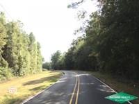 17 Ac, Wooded Tract For Home Site : Swartz : Ouachita Parish : Louisiana