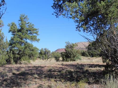 Seligman Country Land : Seligman : Yavapai County : Arizona