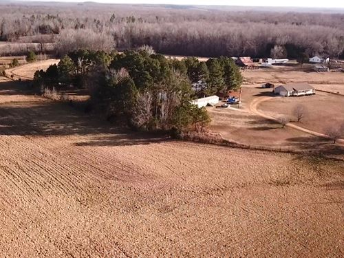 2 Homes, 10.87 Acres Pasture : Beech Bluff : Madison County : Tennessee