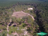 17 Ac, Wooded Home Site Tract : Rocky Branch : Union Parish : Louisiana