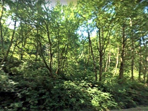 Beautiful Property In Skagit County : Sedro-Woolley : Skagit County : Washington
