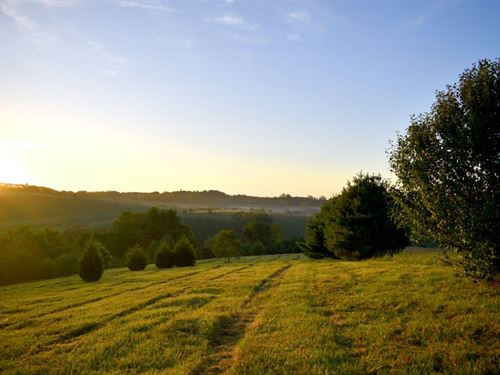 Peaceful Seclusion : Bassett : Henry County : Virginia
