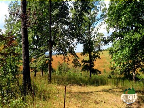 Parcel With Nice Clearing, New Pond : Thornfield : Ozark County : Missouri