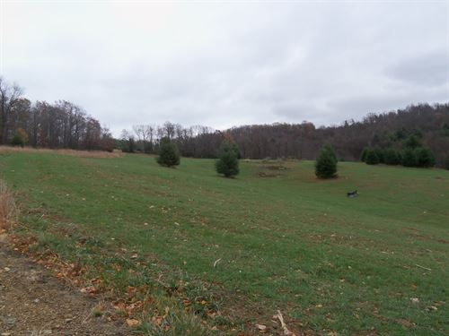 Building Lot in Floyd County : Floyd : Virginia