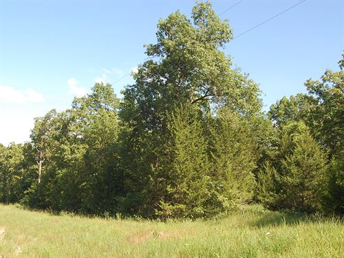 2.82 Acre Lot Near Warsaw : Edwards : Benton County : Missouri