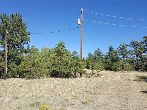 Five Acre Lot With Privacy, Trees : Hartsel : Park County : Colorado