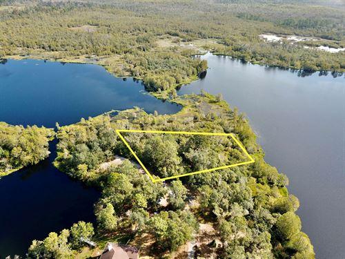 Lake Lot Cove Road, Chipley : Chipley : Washington County : Florida