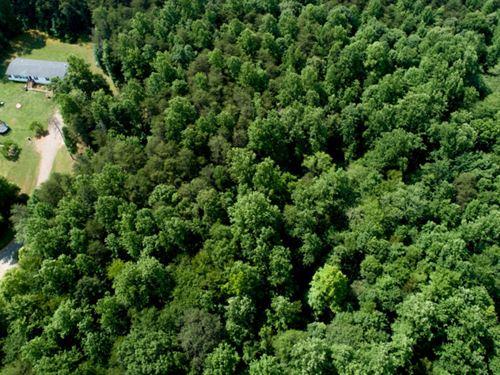5 Acres in Spotsylvania : Spotsylvania Courthouse : Spotsylvania County : Virginia