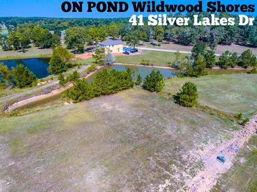 .15 Acres in Walker County : Huntsville : Walker County : Texas