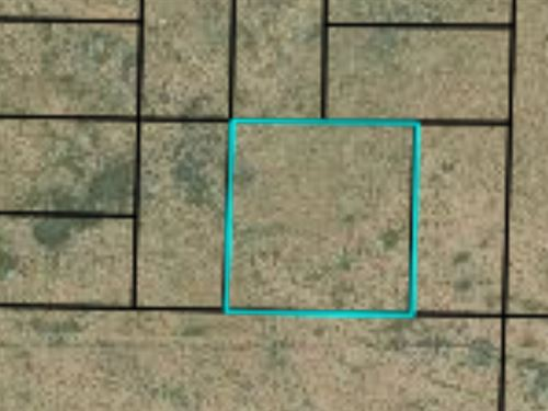 2.5 Acres in Navajo County, Az : Holbrook : Navajo County : Arizona