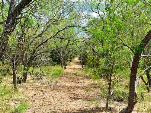 11 Ac Near Austin W/Owner Financing : Lockhart : Caldwell County : Texas