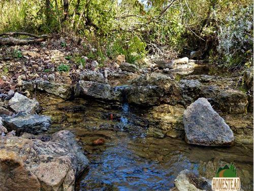 One Of A Kind Property With Creek : Ava : Douglas County : Missouri