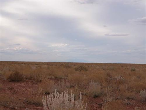 Beautiful Lot 9.54 Acres in Navajo : Snowflake : Navajo County : Arizona