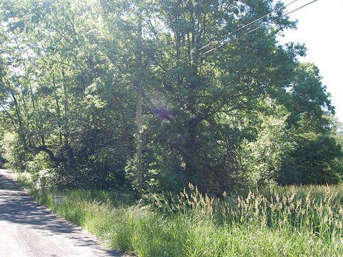 .29 Acre Lot in Ravenna : Ravenna : Portage County : Ohio