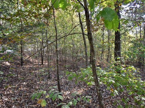6.21 Acres Vacant Land Humphreys : Waverly : Humphreys County : Tennessee
