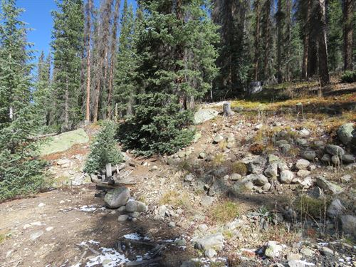 4181316, Incredible 14.80 Acre Par : Nathrop : Chaffee County : Colorado