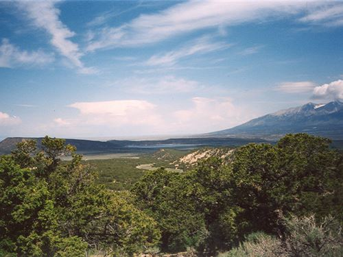 18.8 Private Acres With Trees : Garland : Costilla County : Colorado