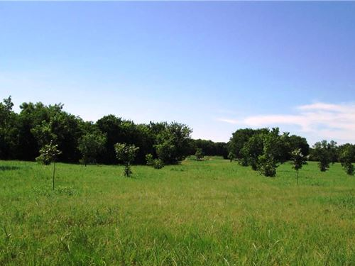 Secluded Land With Pond : Forney : Kaufman County : Texas