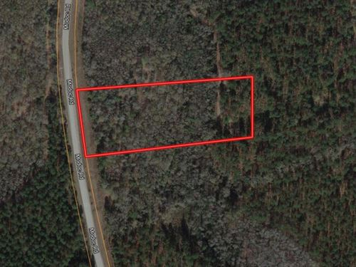 5 Acre Parcel Modoc Swainsboro, GA : Swainsboro : Emanuel County : Georgia