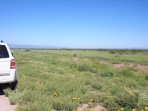 Beautiful Parcel, Ru4, $175 P/Mo : Douglas : Cochise County : Arizona
