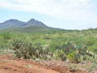 Spectacular Acreage, Only $275 P/Mo : Douglas : Cochise County : Arizona
