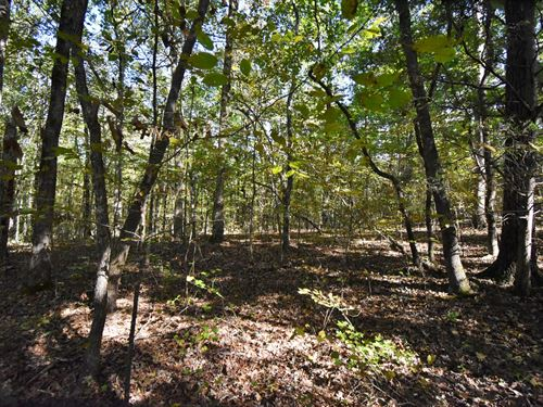 2.42 Acres Beautiful Tennessee : Linden : Perry County : Tennessee