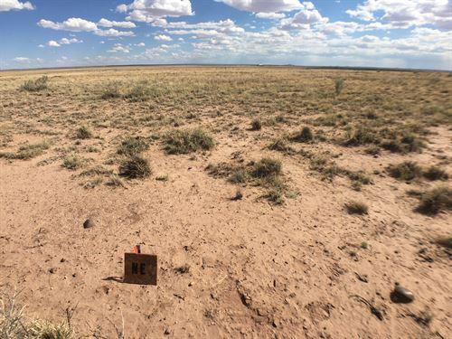 Enjoy in Navajo With No Neighbors : Holbrook : Navajo County : Arizona