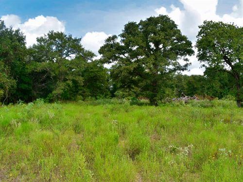 15.4 Acres South Of Austin : Redrock : Bastrop County : Texas