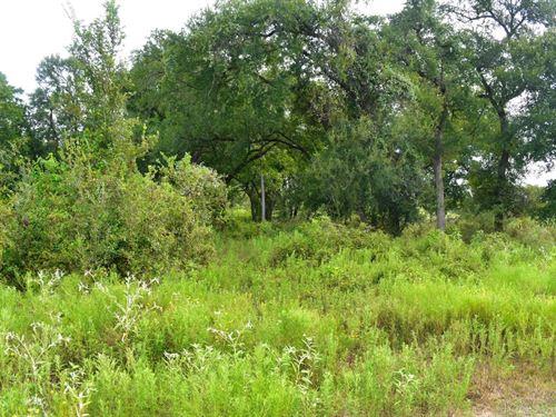 12 Acres South Of Austin : Redrock : Bastrop County : Texas