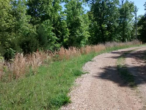 Large Building Lot With Electric : Williford : Sharp County : Arkansas