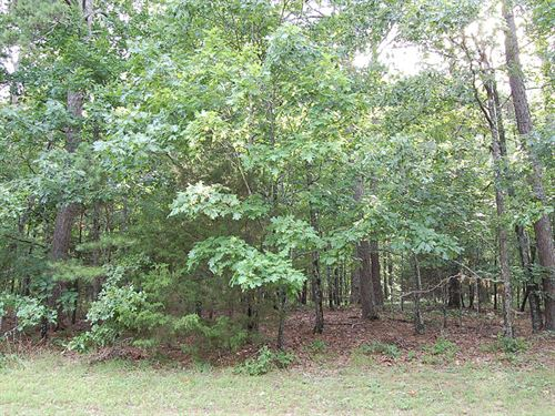 .2 Acre Lot Near Greers Ferry : Edgermont : Cleburne County : Arkansas