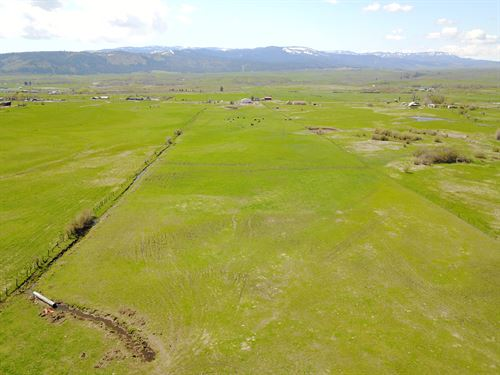 Rural Building Lot Year-Round Creek : Council : Adams County : Idaho