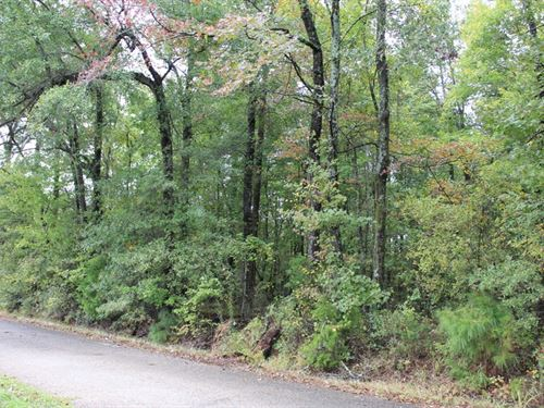 Wooded Homesite To Build Your Dream : New Boston : Bowie County : Texas