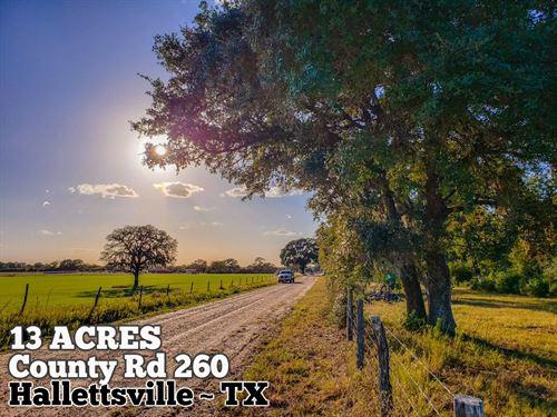 13.33 Acres in Colorado County : Hallettsville : Colorado County : Texas