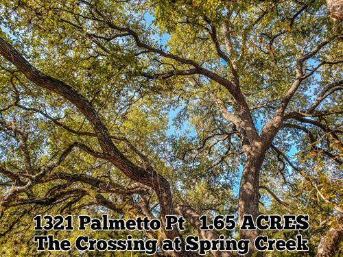 1.65 Acres in Comal County : Spring Branch : Comal County : Texas