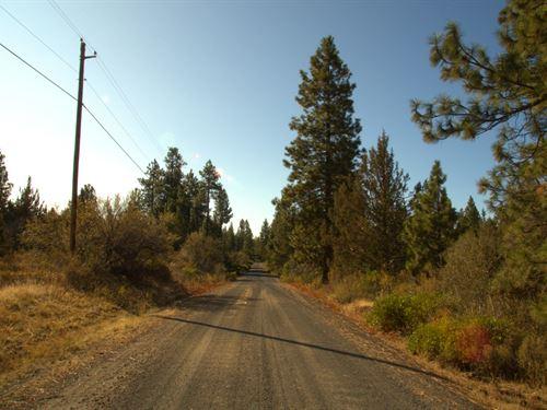 Power At Road, $160/Month : Bonanza : Klamath County : Oregon