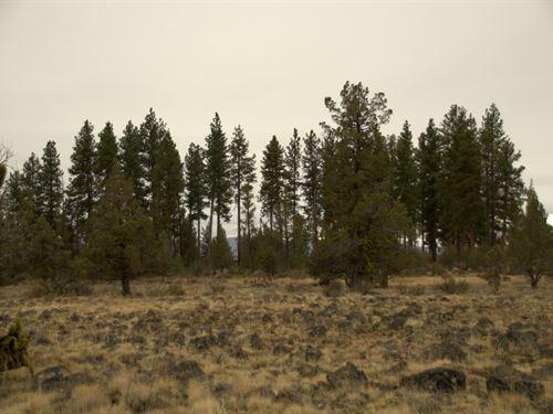 Private Corner Lot, $125/Month : Chiloquin : Klamath County : Oregon