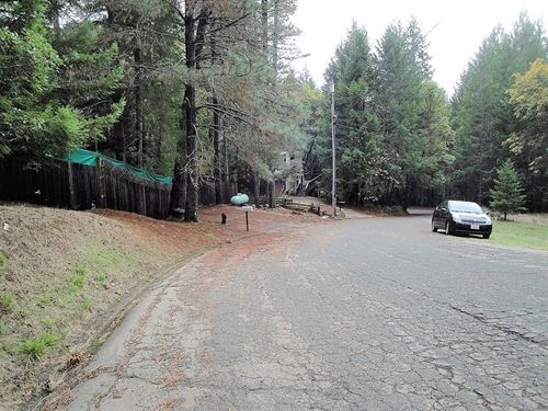Treed Lot, Paved, Utils, $170/Mo : Willits : Mendocino County : California