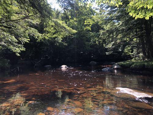 Little Black Creek, Adirondacks : Remsen : Oneida County : New York