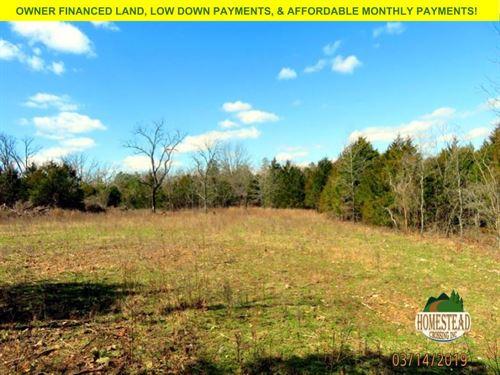 Wonderfully Wild Property : Drury : Ozark County : Missouri