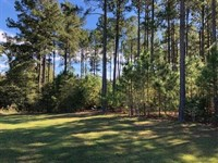 Beautiful Lot With a Lake View : Cochran : Bleckley County : Georgia