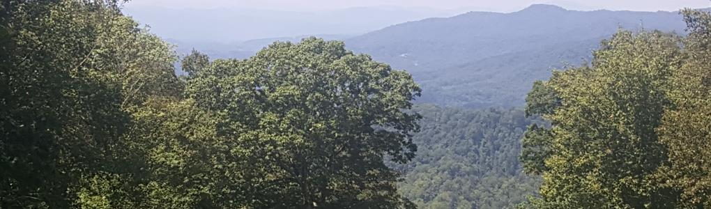 Lot Liquidation Near Asheville NC : Mars Hill : Madison County : North Carolina