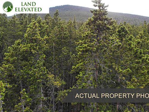 1.74 Acre Mountain Escape : Fort Garland : Costilla County : Colorado